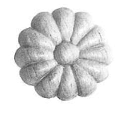 Rosette in Buche. D: 51 mm  Bild1